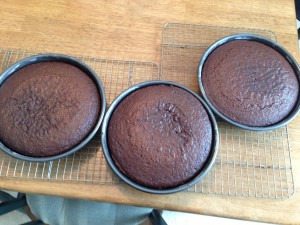 chocolate cakes just out of oven